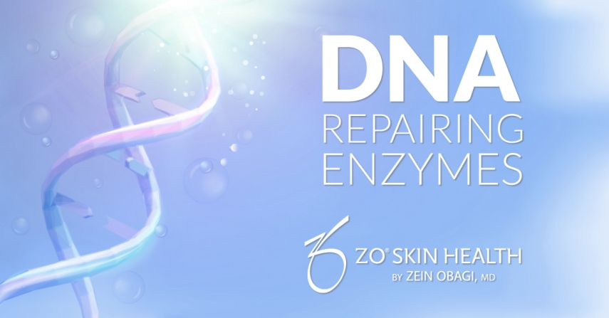 ZO Skin Health & DNA Repairing Enzymes